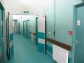 scofab-atelier-bois-protections-murales-02